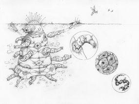 Sketch of complex alien