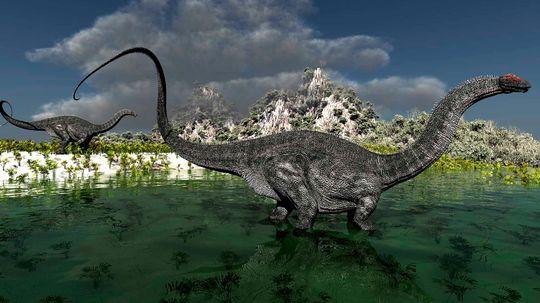 The Big Dinosaur Debate: Is It an Apatosaurus or Brontosaurus?