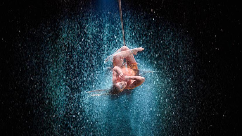 "A performer in Cirque du Soleil's show ""Luzia"""