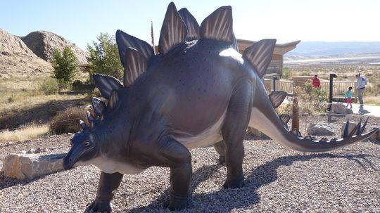 Stegosaurus: Body Like a Bus, Tiny Little Brain