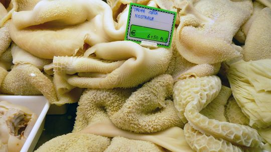 If at First You Don't Succeed, Try Tripe Again