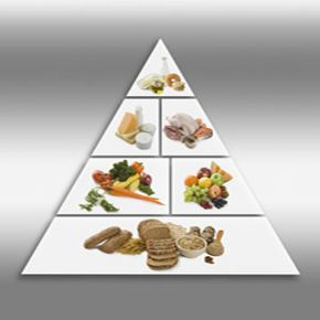 Vitamins can be good for you, but could never replace the food pyramid.