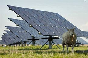 Sheep rest by photovoltaic panels installed at Solarpark Rodenäs in North Friesland, Germany. This might be what you tend to think of when you contemplate solar panels. See more green science pictures.