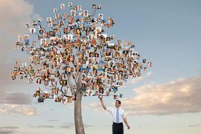Start out with a visual idea of what you want your family tree to look like.