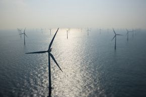 Some crafty pinnipeds may view wind farms like this one, sunk off the coast of Denmark, as stashes of food.
