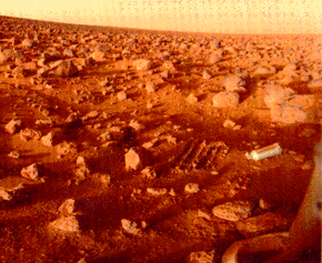 You'd probably need to pack some extra water to survive the harsh, desertlike conditions of the Red Planet. See more Mars landing pictures.