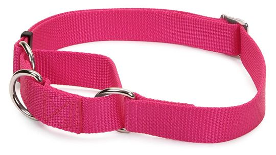 The Martingale Collar Is Man — and Dog's — Best Friend