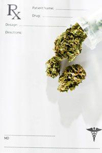 Medicinal marijuana is a $1.7-billion industry.