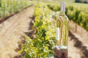 Wine country is a popular travel destination for couples and friends.