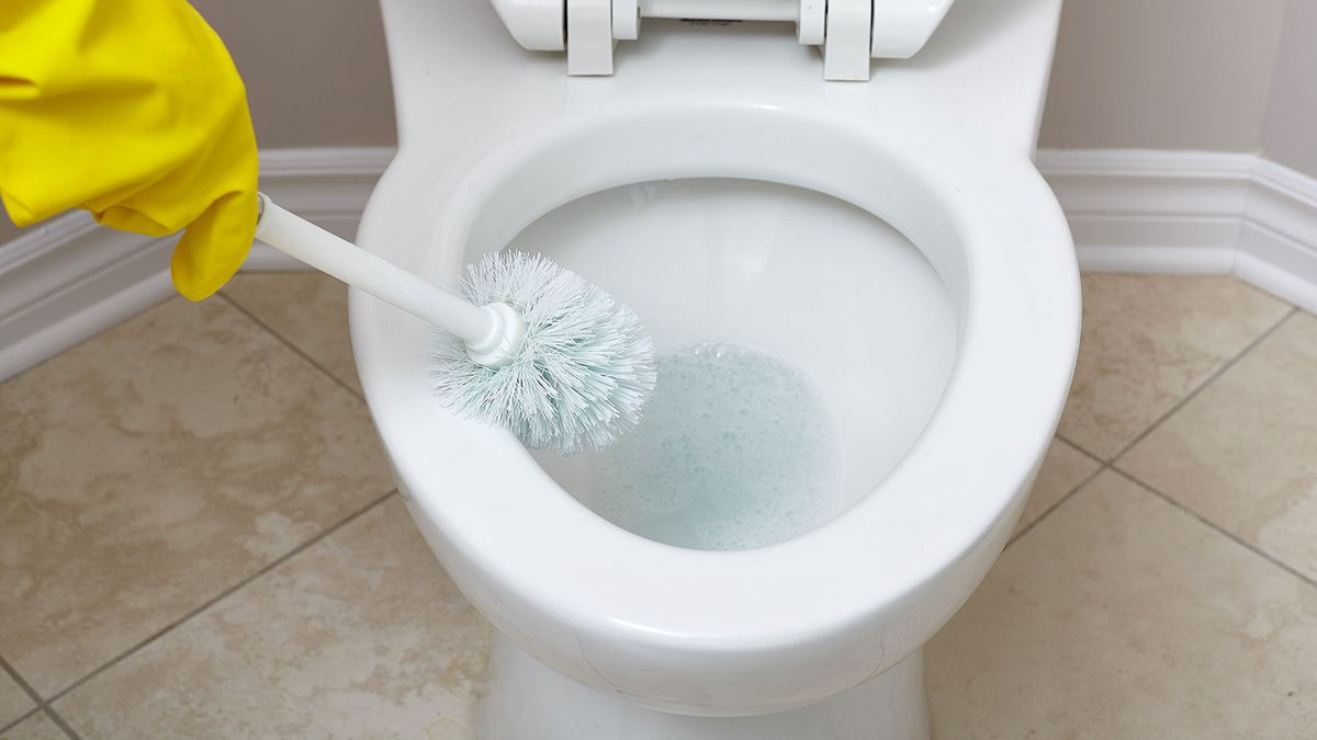 Toilet That Gurgles