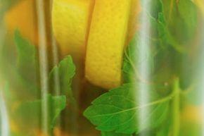 Will an herbal tea give you fresh breath?