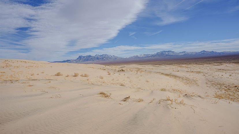 kelso sand dunes