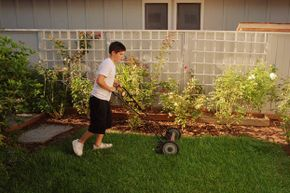 Your neighbors will often be looking for someone to cut their grass.