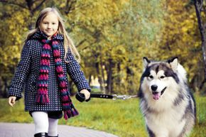 If you're planning to get into the dog-walking business, check with the dog's owners that their pet in kid-friendly.