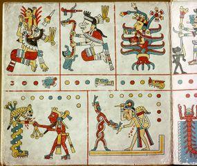 Codex Fejervary Mayer