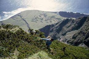 A man climbs among stumpy tree ferns above Hottentot Gulch, Tristan da Cunha Island. See more pictures of beaches.
