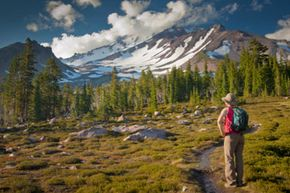 There's a lot more to look at than just Mount Shasta.