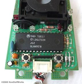 The logic section of a mouse is dominated by an encoder chip, a small processor that reads the pulses coming from the infrared sensors and turns them into bytes sent to the computer. You can also see the two buttons that detect clicks (on either side of the wire connector).