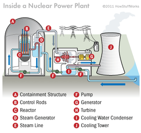 This diagram shows all the parts of a nuclear reactor.