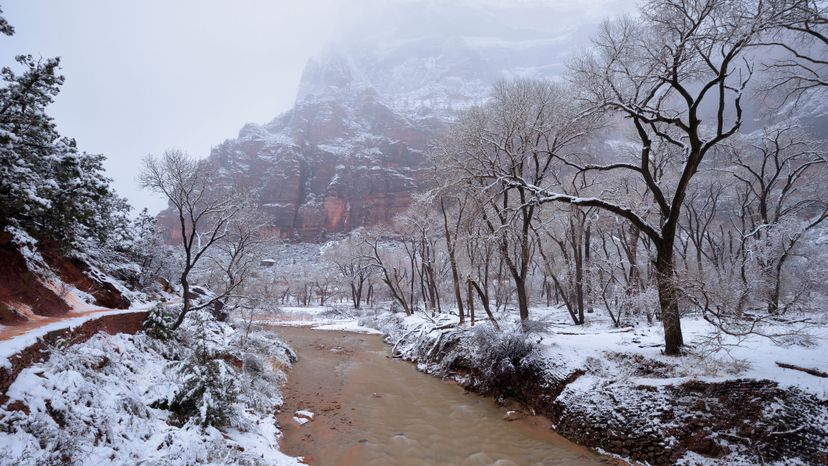 Virgin River, Red Arch Mountains, Zion National Park