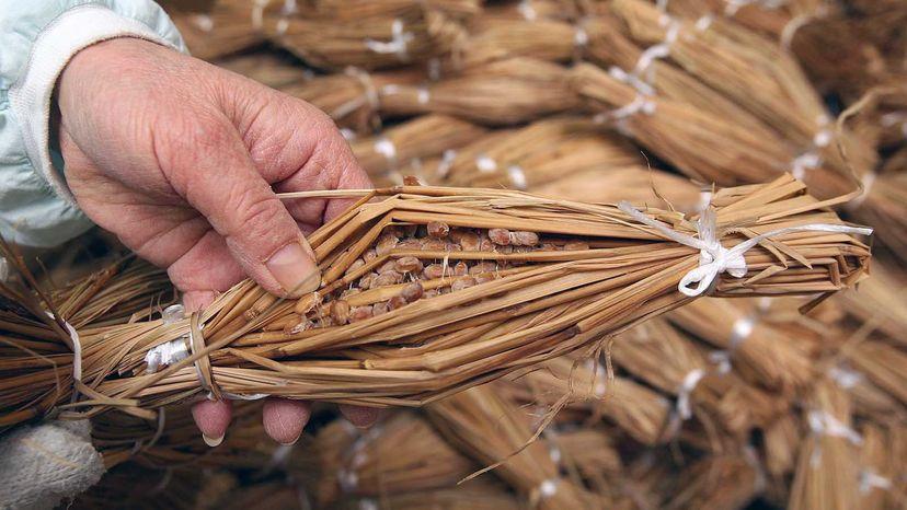 Natto in rice straw