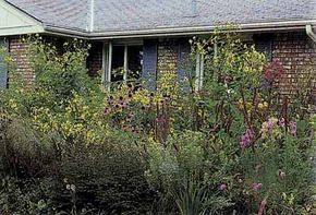 See pictures of famous gardens.