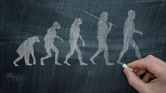 Neanderthal DNA Changed the Way Modern Humans Look