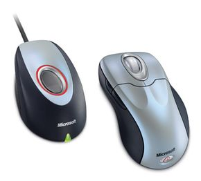 The Wireless IntelliMouse Explorer with Fingerprint Reader is a biometric mouse.