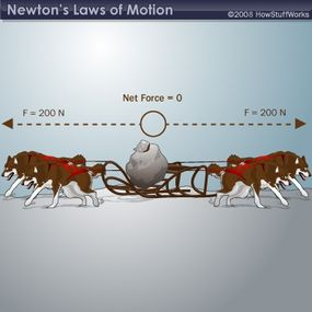 If two dogs are on each side, then the total force pulling to the left (200 N) balances the total force pulling to the right (200 N). That means the net force on the sled is zero, so the sled doesn't move.