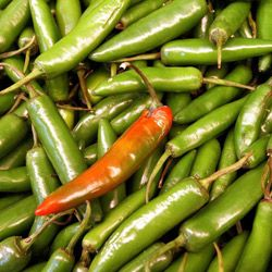 Creams and patches that capitalize on capsaicin may help neuropathic pain sufferers.