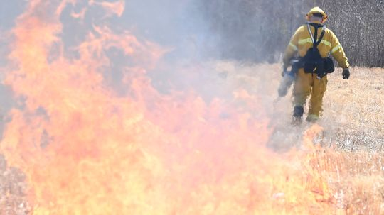 New Jersey's Pinelands Are Ripe for an Australia-type Wildfire
