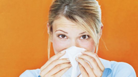 10 Home Remedies for Allergies