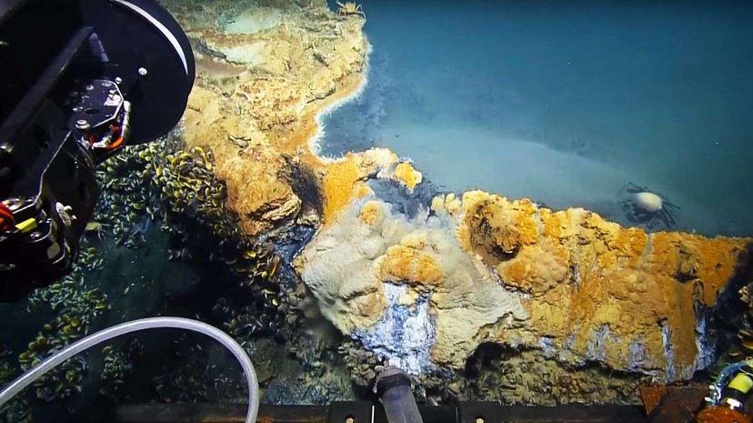 undersea exploration, nautilus, jacuzzi of despair