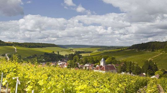 Climate Change Is Affecting French Wines — For Good and Bad