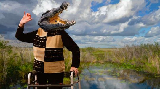 Nile Crocodiles Retiring to South Florida?