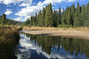 The Colorado River pictured five miles from its source in the Rocky Mountains.