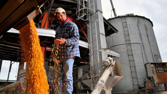 Why the U.S. Cares So Much About Corn ... Is Complicated