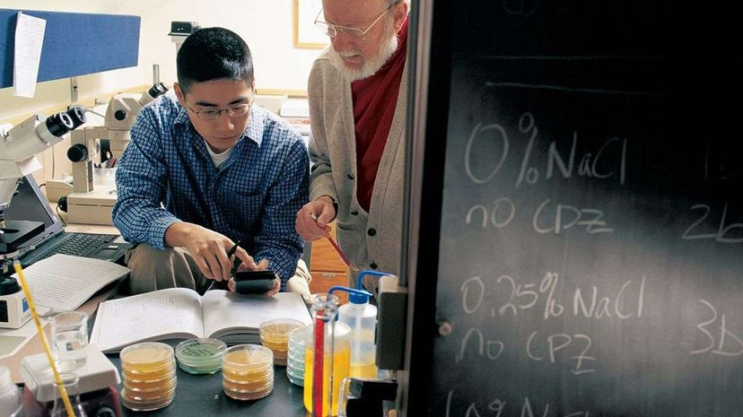 Dr. William Campbell (R) works with a Drew University undergraduate student in 2001. Campbell and researchers Satoshi Omura and Youyou Tu received the 2015 Nobel Prize in Medicine. Bill Dennison/Drew University/Getty Images