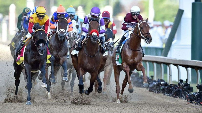 Horse racing not your thing? No problem. The UNU swarm intelligence platform is happy to predict who will win the 2016 Stanley Cup (the Penguins) or who Donald Trump will pick as his vice president (Chris Christie). Horsephotos/Getty Images Sport