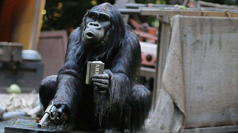A gorilla brandishes a gun in a scene from the Walt Disney World attraction Jungle Cruise. Scott Barlow