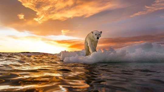 The Ambitious Proposal to Re-freeze the Arctic
