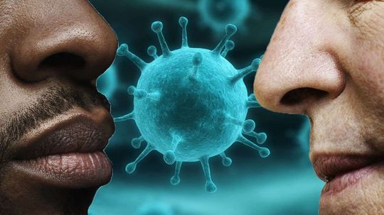 The Curious Ability to Detect Disease by Smell