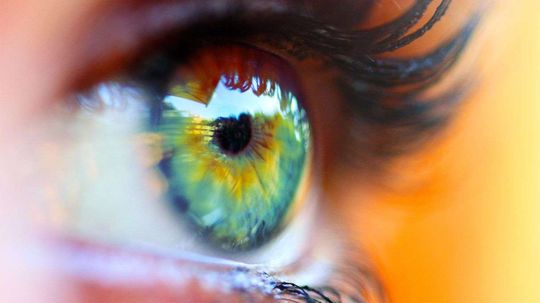 Lucky Tetrachromats See World With Up to 100 Million Colors