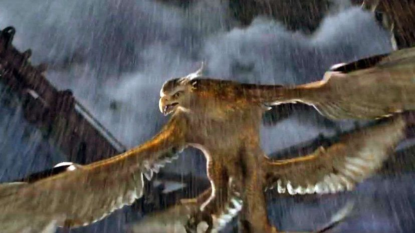 Fantastic Beasts and Where to Find Them: Right Here Screengrab and video from Warner Bros. Fantastic Beasts and Where to Find Them  Final Trailer on YouTube