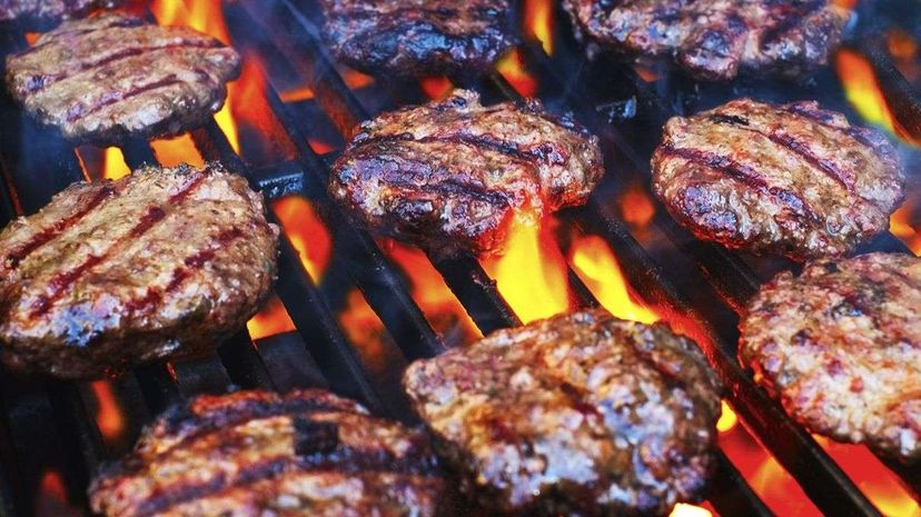 grill brush, grilled meat, bristles, burgers