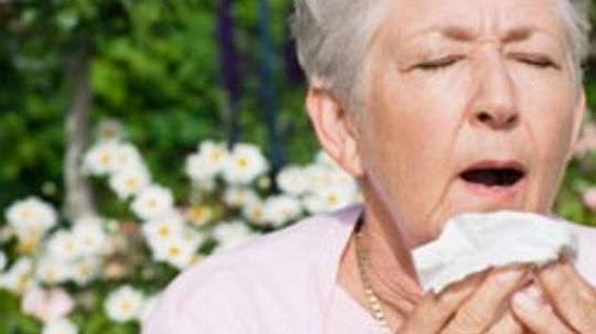 Are there any treatments for hay fever?