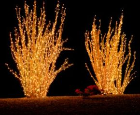 Use decorative lighting for outdoor parties to illuminate the festivities.