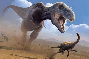 Tyrannosaurus rex dinosaur hunting an Ornithomimus dinosaur