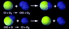 When chlorine encounters ozone, chlorine monoxide and an oxygen molecule form (destroying the ozone). When chlorine monoxide encounters an oxygen atom, the chlorine is released to wreak havoc on more ozone.
