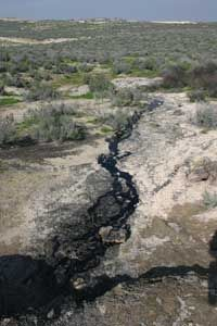 Petroleum rises naturally to the surface at this tar seep in central California.